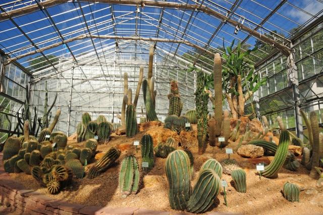Sirikit-Botanical-Garden-ChiangMai