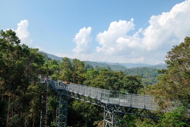 Sirikit-Canopy-Walkway